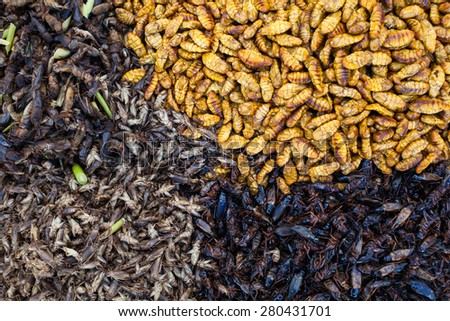 Thai food at market. Fried insects  - stock photo