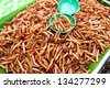 Thai food at market. Fried insects mealworms for snack - stock photo