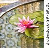 Thai pattern reflex on the lotus sink, at Bangkok. - stock photo