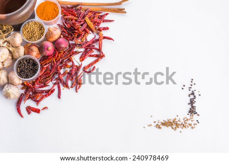 Thai spices and herbs text frame for your text on white background - stock photo