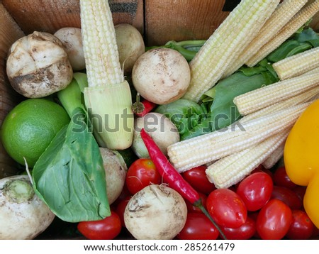 Thai spicy home-grown vegetable. - stock photo