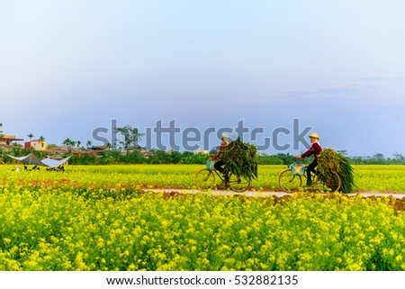 ThaiBinh, Viet Nam, december, 7, 2016: two woman cycling on Council reform at Thai Binh, Viet Nam