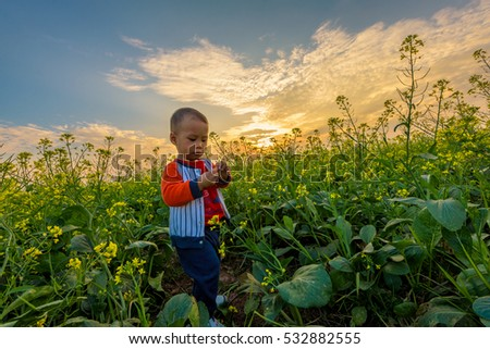 ThaiBinh, VietNam, december, 07, 2016: a boy on contract Flower reform at Thai Binh, Viet Nam