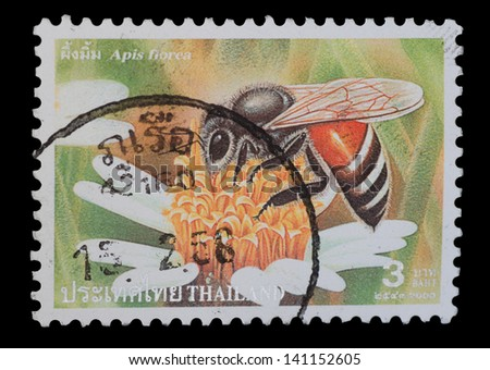 "THAILAND - CIRCA 2000: A postage printed in Thailand show image of Apis florae from the series "" Bee "", circa  2000"