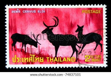 """THAILAND - CIRCA NOVEBER 1973: A postage  printed in Thailand shows silhouette image of antelope with inscription """"Cervus Eldi"""", from the series """"Protected Wild Animals, 1st Series"""" circa November 14, 1973 - stock photo"""