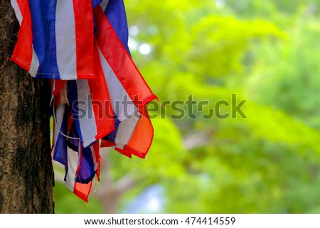 Thailand flag on tree background