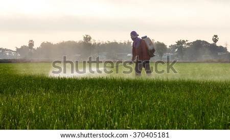 Thailand Man farmer to spray herbicides or chemical fertilizers on the fields green rice growing. - stock photo