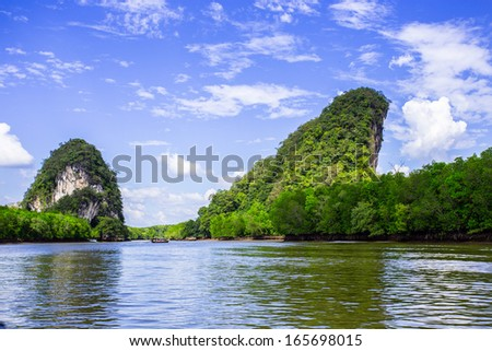 Thailand mangroves river - stock photo