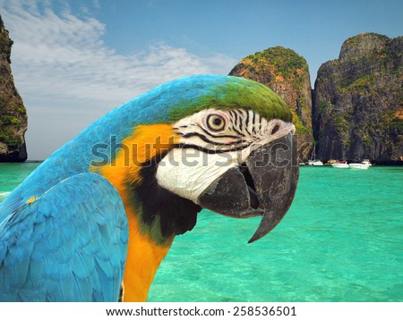 Thailand Maya beach beach with parrot and boats - stock photo