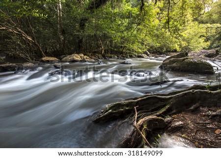 Thailand stream  (Khao Yai) - stock photo