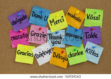 Thank you in sixteen languages - colorful sticky notes with handwriting on cork bulletin board - stock photo