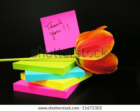 Thank you message and red tulip on black background - stock photo