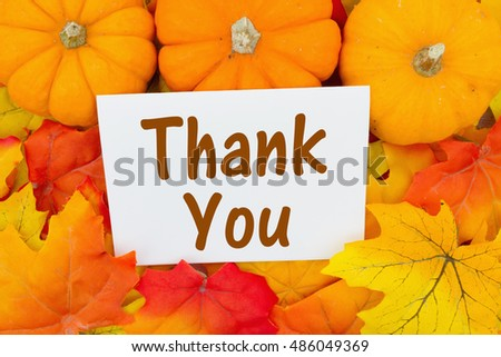 Thank You Message, Some fall leaves and pumpkins with text Thank You on a greeting card