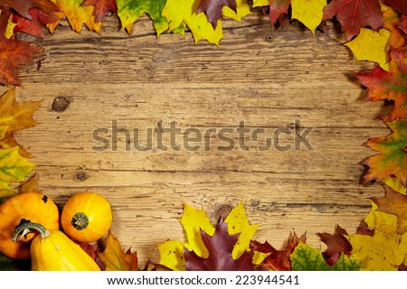 Thanksgiving Autumn Fall background with red, brown and yellow leaves and pumpkin - stock photo
