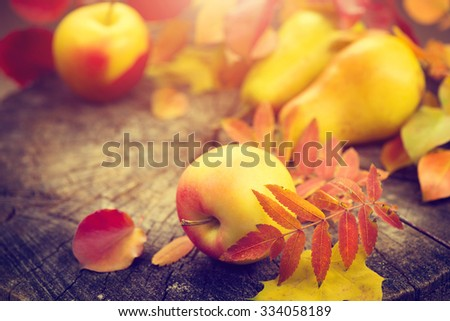 Thanksgiving border background. Autumn Fall background with colorful leaves, apples and pears, Beautiful vintage styled autumn fruits and colorful leaves over wooden table - stock photo
