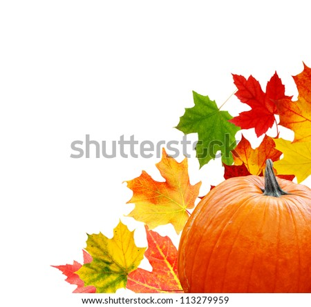 Thanksgiving celebration: in pumpkin with maple leaves background - stock photo