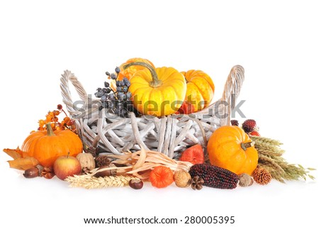 Thanksgiving - different pumpkins, berries, nuts and grain in rattan basket on white background with copy space - stock photo