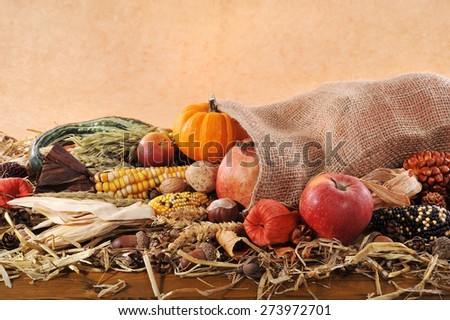 Thanksgiving - different pumpkins, maize-cob, apples and grain in jute bag on straw with copyspace in front of brown background - stock photo