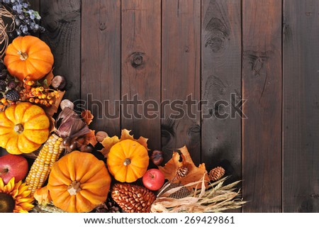 Thanksgiving - different pumpkins with nuts, berries, maize-cob and grain on wooden floor - stock photo