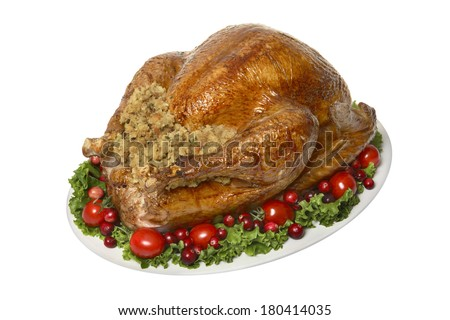 Thanksgiving dinner turkey on white  - stock photo