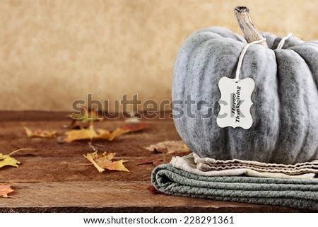 Thanksgiving holiday, green pumpkin still life decoration with with greeting card wishing a Happy Thanksgiving. Extreme shallow depth of field. - stock photo