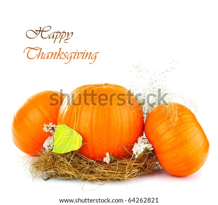 Thanksgiving holiday greeting card with gourd isolated on white background - stock photo