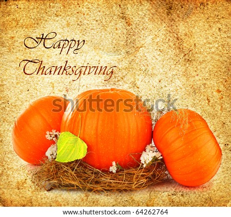 Thanksgiving holiday greeting card with orange gourds - stock photo