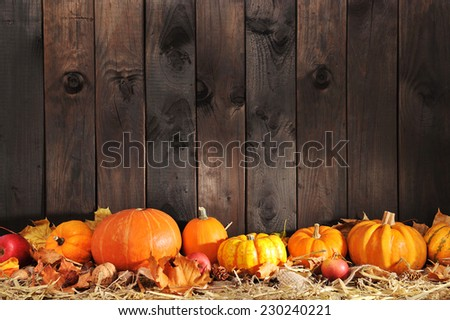 Thanksgiving � many different pumpkins on straw in front of old weathered wooden boards with copyspace - stock photo