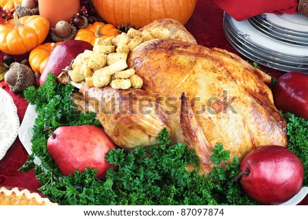 Thanksgiving or Christmas turkey dinner with fresh red pears and parsley. - stock photo
