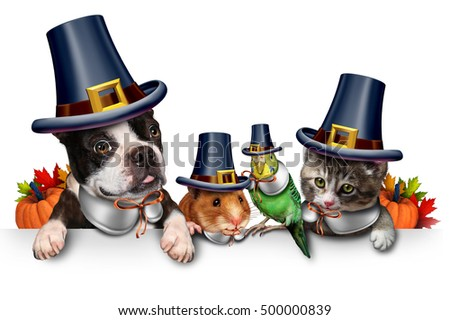 Thanksgiving pet celebration as a blank sign with a fun cat happy dog cute hamster and budgie each wearing a pilgrim hat as an autumn seasonal symbol for funny pets in with 3D illustration elements.
