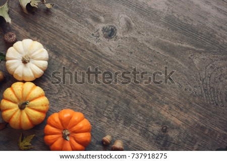 Thanksgiving season still life with colorful small pumpkins, acorns, fall  leaves over rustic wood