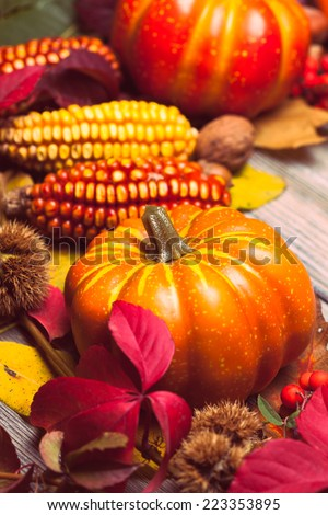 Thanksgiving still life - berries, nuts, corn and pumpkins on a table