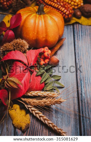 Thanksgiving still life - berries, nuts, corn and pumpkins on a table - stock photo