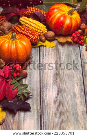 Thanksgiving still life - berries, nuts, corn and pumpkins with copy space - stock photo