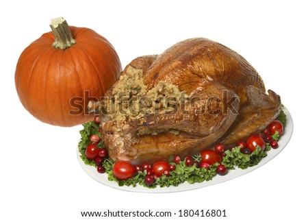 Thanksgiving turkey dinner  - stock photo