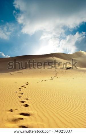Thar desert in India - stock photo