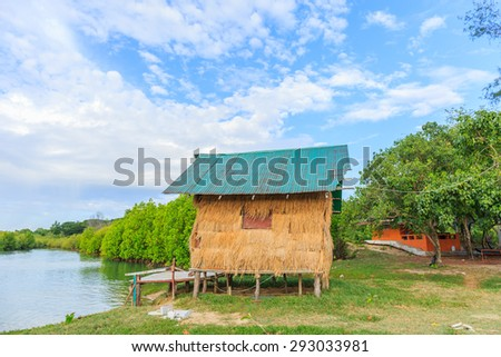 thatched cottage in mangrove forest - stock photo