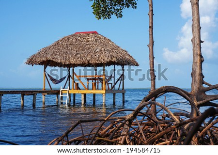 Thatched hut with hammock over the sea and mangrove tree roots in foreground - stock photo
