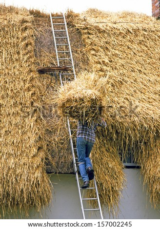 Thatcher carrying bundle of thatch onto house roof - stock photo