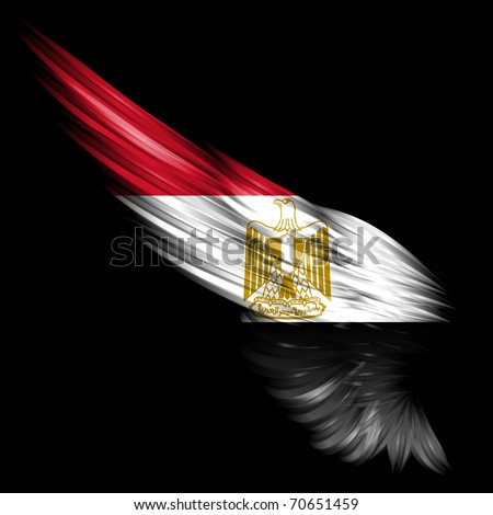 The Abstract wing with Egypt flag on black background - stock photo