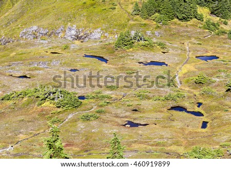 The aerial view of a valley from the top of Deer Mountain (Ketchikan, Alaska).