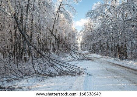 The after effects of an ice storm in winter. - stock photo