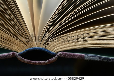 the all-knowing eye - stock photo
