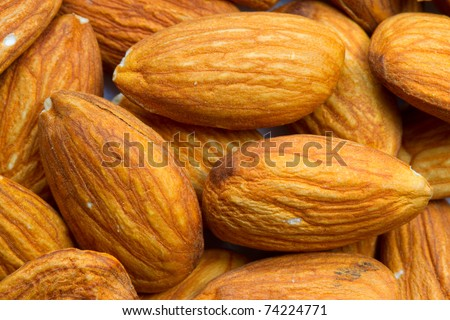 THE ALMOND, PRUNUS DULCIS AMYGDALES IS A SPECIES OF TREE NATIVE TO THE MIDDLE EAST AND SOUTH ASIA ALMOND IS ALSO THE NAME OF THE EDIBLE AND WIDELY CULTIVATED SEED OF THIS TREE   - stock photo