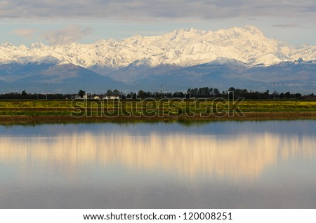 The Alps reflected in the rice fields,