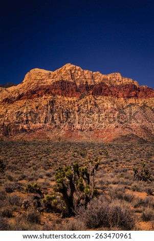 the amazing landscape of the desert at Red Rock Canyon near Las Vegas, Nevada. - stock photo