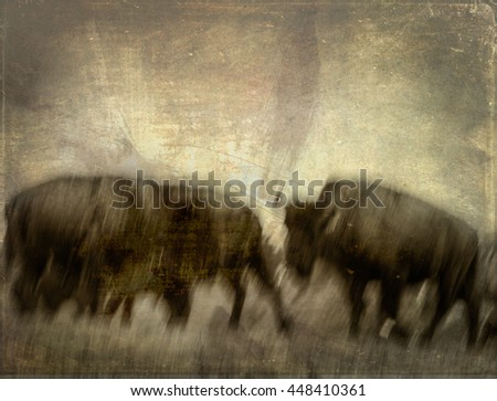The American bison are the largest terrestrial animals in North America. These buffalo are located in North Carolina. A texture was added in order to give the image a more prehistoric look and feel. - stock photo
