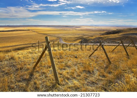 The American prairie in October. A yellow grass and the American road - stock photo