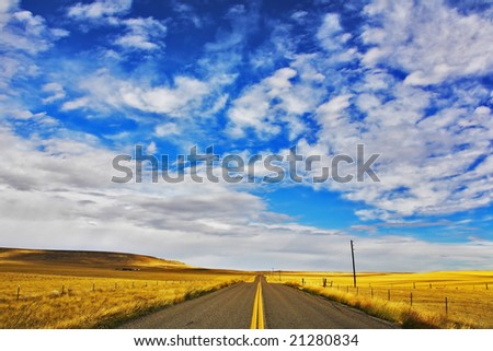 The American prairie in  September. A yellow grass and the American road - stock photo