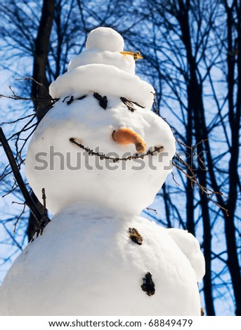 The amusing snowman against the dark blue sky and dense trees - stock photo